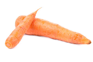 Two ripe carrots.