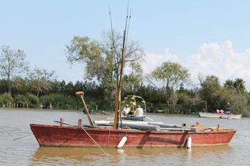 Barca tradicional en estanque