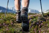 Hiking on a swedish trail