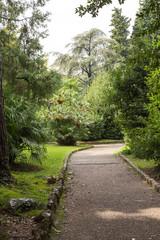 allée dans le jardin à Opatija