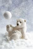 Polar Bear Decoration - 71128883