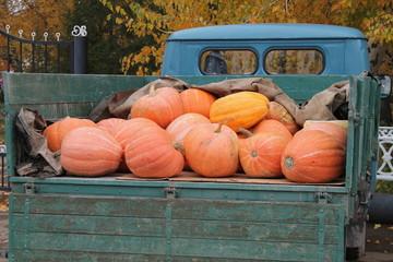 Pumpkins for sale at the autumn fair.