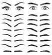 Eyes  eyebrow   women and man vector - 71129861