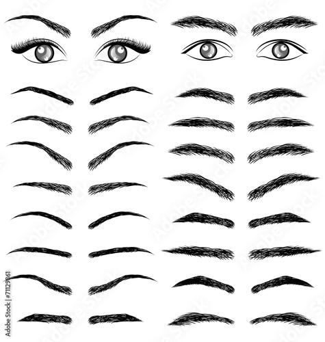 Eyes  eyebrow   women and man vector