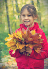 beautiful little girl and a bouquet of autumn leaves