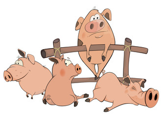 little pigs cartoon