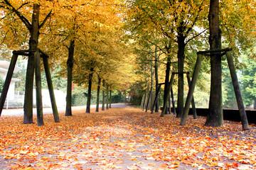 Grevenbroich Stadtparkinsel