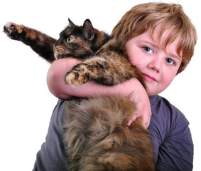Cute blond boy with a cat. Isolated over white background.