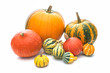 Pumpkins isolated on a white background