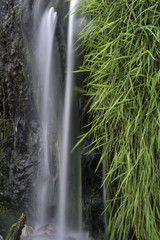 Detail landscape image of waterfall flowing over grassy rocks