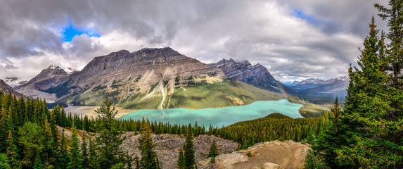 Panoramic view of Peyto lake and Rocky mountains, Canada