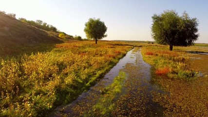 Flooded road in the Danube delta