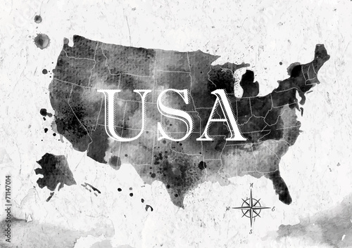 Ink United States map Poster