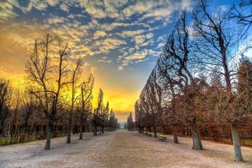 Аллея в парке на закате