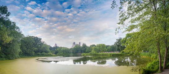 Stunning panoramic view of Central Park in June - New York City