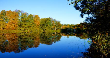 Осень на Буяновском озере