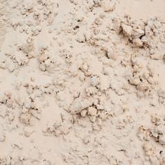 Dry sand soil fragment