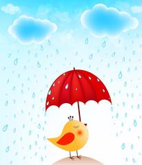 funny bird with umbrella