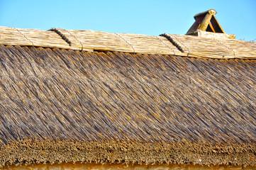 Tablas de Daimiel, tejado de un refugio, Ciudad Real