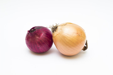 Red and yellow onion on white background