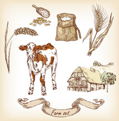 Farm set. Hand drawn illustration of cow, house, grain, calf