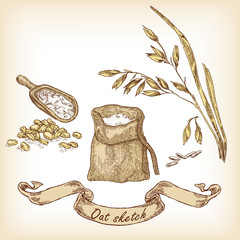 Bakery sketch. Hand drawn illustration of oats and grain