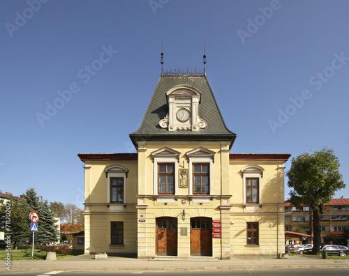 City hall in Lesko. Poland