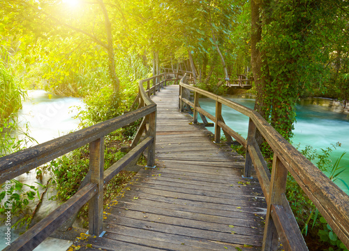 canvas print picture Boardwalk in the park