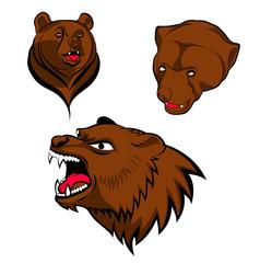 brown bear heads
