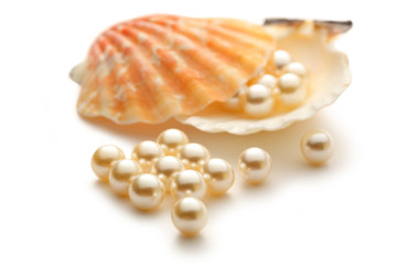 White pearls in seashell