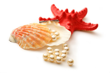 White pearls in seashell and seastar