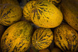 melons on the market.  Ripe yellow melons