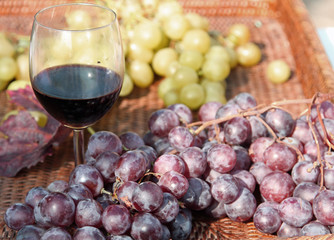 glass of red wine with grapes in autumn