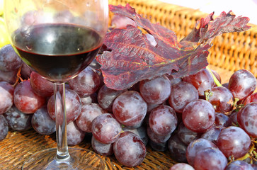glass of red wine with bunches of ripe grapes
