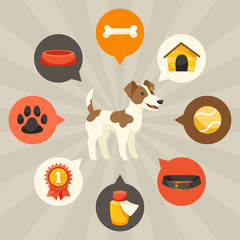 Visual infographics with cute dogs, icons and objects.