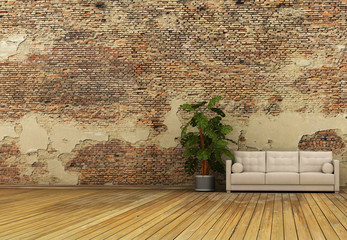 old wall and plant sofa