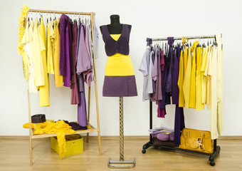 Wardrobe with purple and yellow clothes on hangers and mannequin