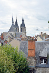 Blois France Roofs and Church
