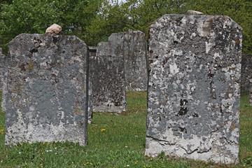 Historische Grabsteine