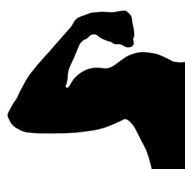 Black silhouette of muscle biceps