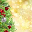 Zdjęcia na płótnie, fototapety, obrazy : christmas  border  with fir tree