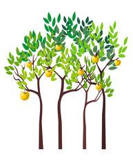 Four Apple Trees