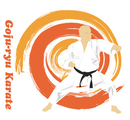 The illustration, the man is engaged in karate on a bright backg