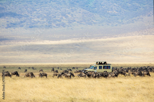 Foto op Canvas Afrika Safari tourists on game drive in Ngorongoro