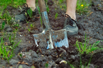 man digging with a shovel with green grass