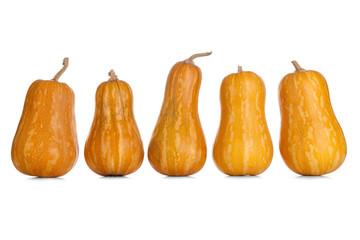 Pumpkins on white backgrouns
