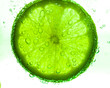 Slice of lime with water drops