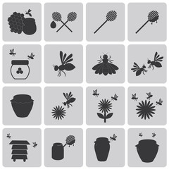 Honey Bee Black icons set3. Vector Illustration eps10