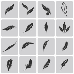 Vector black feather Black icons set. Vector Illustration eps10