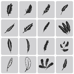 Vector black feather Black icons set2. Vector Illustration eps10